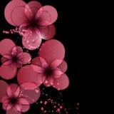 Kaart met bloemen. Mooie bloemenachtergrond. Stock Foto's