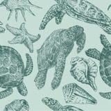 Achtergrond met overzeese schildpadden Royalty-vrije Stock Afbeeldingen