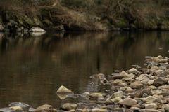 Achtergrond met rivier en stenen tijdens de herfst/Foto van een rivier met stenen uit nadruk stock fotografie
