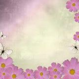 Achtergrond met roze madeliefje stock illustratie