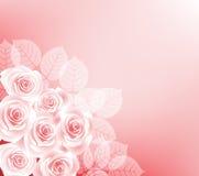 Achtergrond met rozen Stock Foto