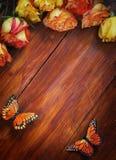 Achtergrond met Rozen en Vlinders Royalty-vrije Stock Foto