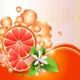 Achtergrond met sappige plakken van grapefruit royalty-vrije illustratie