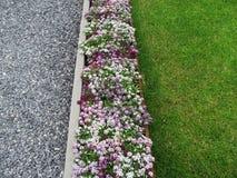 Achtergrond met strepen van grasbloemen en Royalty-vrije Stock Foto's