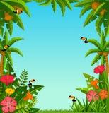 Achtergrond met tropische installaties en papegaaien Royalty-vrije Stock Afbeeldingen