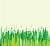 Achtergrond met vector groen gras Stock Afbeelding