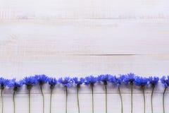 Achtergrond met verse korenbloemen op een lichte houten lijstachtergrond Plaats voor tekst Stock Afbeelding
