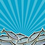 Achtergrond met vissen Royalty-vrije Stock Foto
