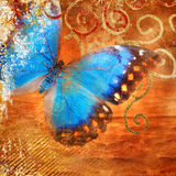 Achtergrond met vlinder Stock Fotografie
