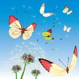 Achtergrond met vlinder. Vector. Royalty-vrije Stock Afbeelding
