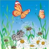 Achtergrond met vlinder. Vector. Stock Afbeelding