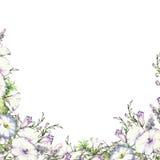 Achtergrond met waterverf die wilde bloemen, rond bloemenkader, kroon met geschilderde gebiedsinstallaties trekken, kruidengrens royalty-vrije stock foto's