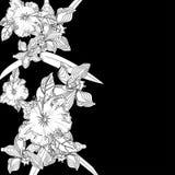 Achtergrond met witte bloemen royalty-vrije illustratie