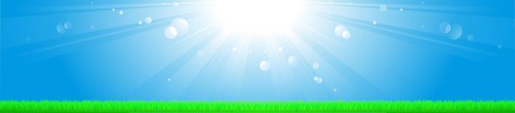 Achtergrond met zon, blauw hemel en gras Stock Fotografie