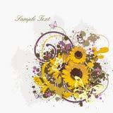 achtergrond met zonnebloemen Stock Foto's