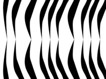Achtergrond met zwart-witte strepen, gestreepte tijgertextuur, vector illustratie