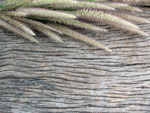 Achtergrond, oude houten achtergrond met gras Stock Foto