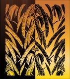 Achtergrond palm Royalty-vrije Stock Afbeelding