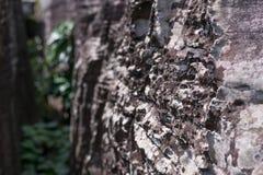 Achtergrond, textuur van natuursteen Royalty-vrije Stock Fotografie