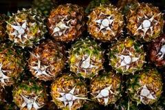 Achtergrond van ananassen Royalty-vrije Stock Foto