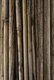 Achtergrond van bamboe Royalty-vrije Stock Afbeeldingen