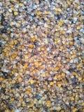 Achtergrond van bladeren van bruine tonen die de herfst vertegenwoordigen royalty-vrije stock afbeeldingen