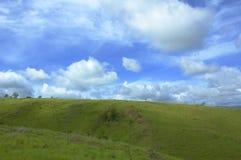 Achtergrond van blauwe hemel en groen gras royalty-vrije stock afbeeldingen