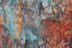 Achtergrond van boomstam en metaalplaat Royalty-vrije Stock Afbeeldingen