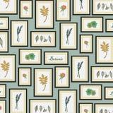 Achtergrond van botanisch patroon Vector Illustratie