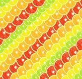 Achtergrond van citrusvrucht (citroen, kalk, sinaasappel, grapefruit) Royalty-vrije Stock Fotografie