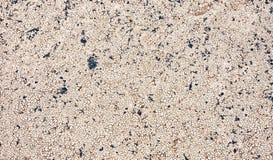 Achtergrond van de close-up de droge gebarsten aarde, de textuur van de kleiwoestijn op roc Stock Fotografie