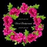 Achtergrond van de de verse bloemen en plaats die van badstofrozebottels wordt gemaakt voor Royalty-vrije Stock Afbeeldingen