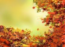 Achtergrond van de herfst de oranje bladeren Stock Foto's