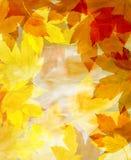 Achtergrond van de herfstbladeren Stock Foto's