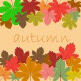 Achtergrond van de herfstbladeren Royalty-vrije Stock Afbeeldingen