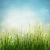 Achtergrond van de het seizoenaard van de lente of van de zomer de abstracte Royalty-vrije Stock Foto's