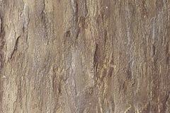 Achtergrond van de hoog gedetailleerde muur van de fragmentsteen Royalty-vrije Stock Foto