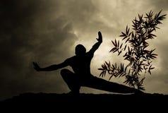 Achtergrond van de Kunst van de kungfu de Krijgs Stock Afbeelding