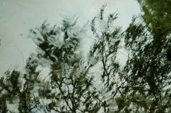 Achtergrond van de mening over een meer met de bezinning van grote bomen, dalingen die van regen op een meer vallen stock foto