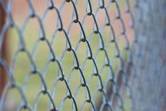 Achtergrond van de omheining van het metaalnetwerk, zachte nadruk Stock Afbeeldingen