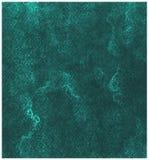 Achtergrond van de quetzal de Groene waterverf op document textuur stock illustratie