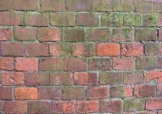 Achtergrond van de rode, groene textuur van het bakstenen muurpatroon royalty-vrije stock afbeeldingen