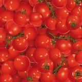 Achtergrond van tomaten Stock Afbeelding
