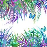 Achtergrond van de waterverf de tropische aard Tropische bladeren, bloemen en vlinder vector illustratie