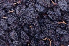 Achtergrond van donkere rozijnen Stock Afbeelding