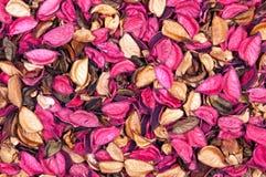 Achtergrond van droge bloemen Royalty-vrije Stock Afbeelding