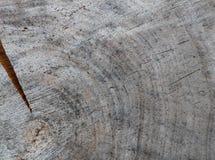 Achtergrond van dwarsdoorsnede van boomboomstam Abstracte textuur van de ringen van oud doorstaan hout met een barst royalty-vrije stock afbeeldingen
