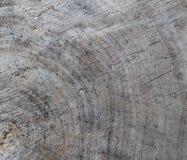 Achtergrond van dwarsdoorsnede van boomboomstam Abstracte textuur van de ringen van oud doorstaan hout met een barst stock foto