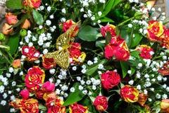 Achtergrond van een boeket van rozen en vlinder op bovenkant Stock Foto