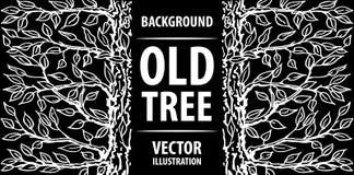 Achtergrond van een oude boom Zwarte achtergrond en witte brieven Vector illustratie Royalty-vrije Stock Fotografie